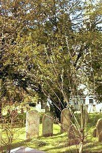 churchyard-8